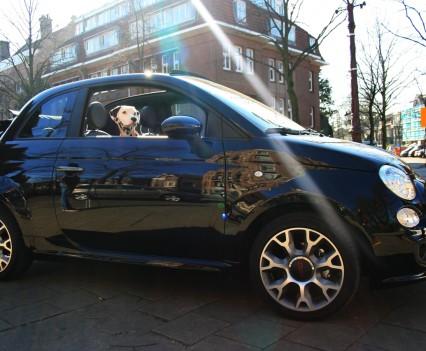 Fiat 500S Cabrio Nouna