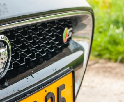 Jaguar F-TYPE Convertible V6 S Grille