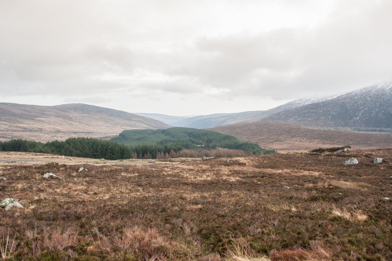Ierland-02.jpg