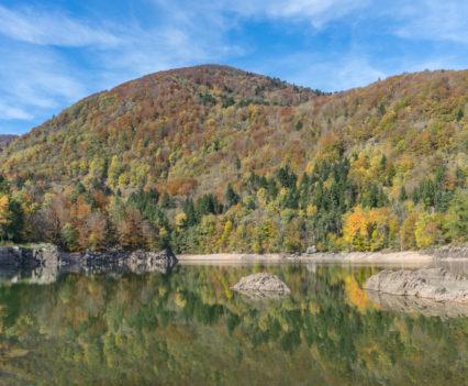 Lac d'Alfeld Vogezen