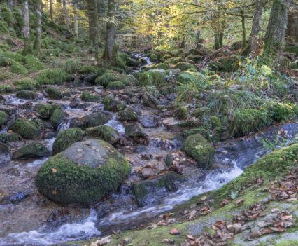 Cascades Saint-Nicolas Vogezen