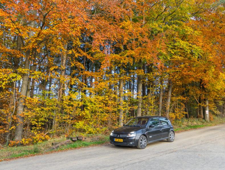 Beter verwend dan verwaarloosd:              Renault Clio RS